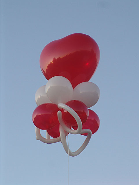 balloon kite heart theme denver